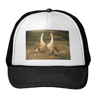 Geese Trucker Hats