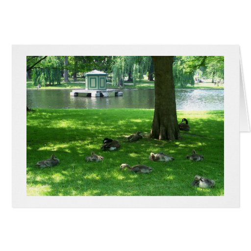 Geese in the Garden Stationery Note Card