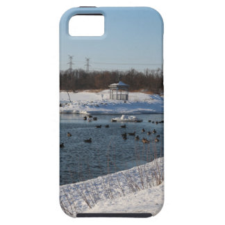 Geese in the lake on winters day iPhone SE/5/5s case