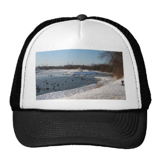Geese in the lake on winters day trucker hat