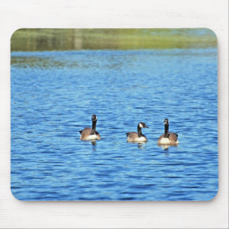 Geese Mouse Pads
