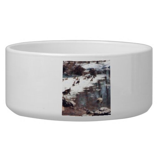 Geese on an Icy Pond Pet Food Bowl
