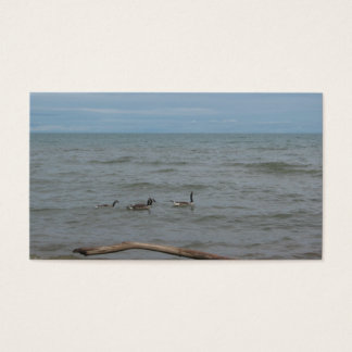 geese on lake huron business card
