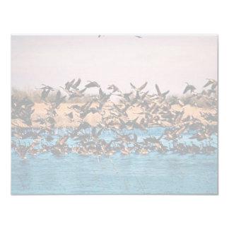 Geese on Owen's Bay, Wetlands Custom Announcement