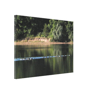 Geese on the Lake Picture Canvas Print