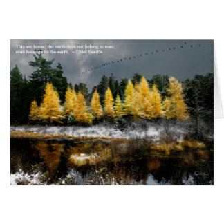 Geese Over Tamarack: Quote card Chief Seattle