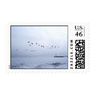 Geese Stamp