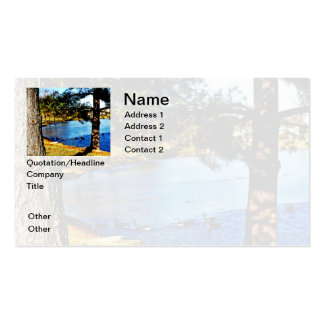 Geese swimming in half frozen lake business card template