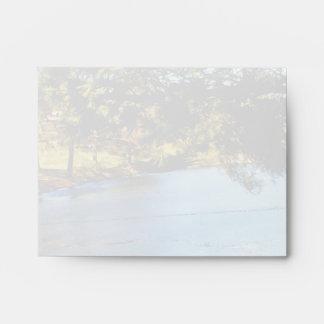 Geese swimming in half frozen lake envelope