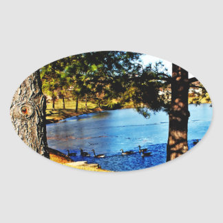 Geese swimming in half frozen lake - trees oval stickers