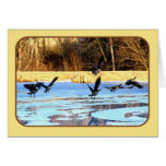 Geese Take Off From A Frozen Pond Greeting Cards