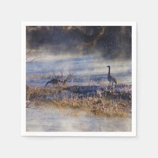 Geese Talking A Break Napkin