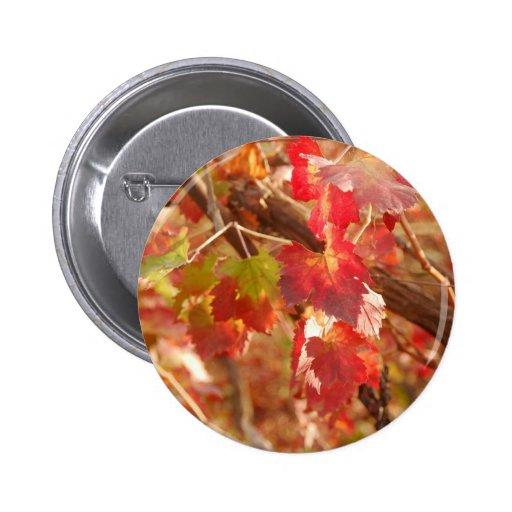 Geffen leaves pin