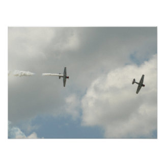 GEICO Skytypers. Poster