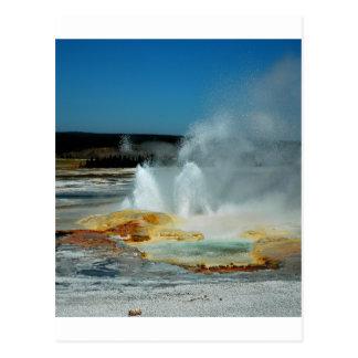 Géiseres de Yellowstone Tarjetas Postales