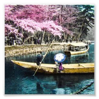 GEISHA de cristal del CANOTAJE de la COMIDA Fotografías