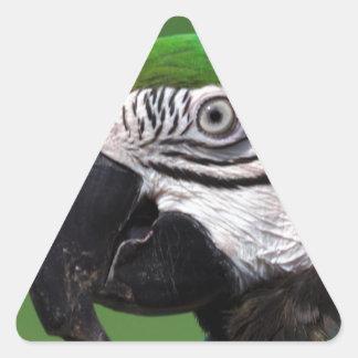Gelbbrustara Pegatina Triangular
