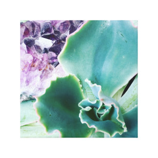 Gem Of Fire~ Purple Amethyst and a Succulent Canvas Print