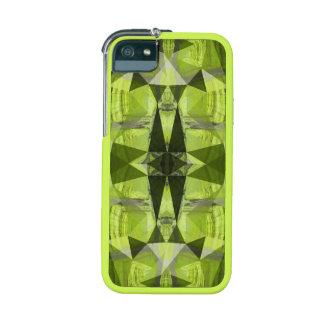 Gem Tortoise iPhone 5/5S Covers