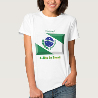 Gema de la bandera de Paraná Remera