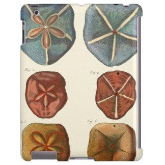 Gemas de los dólares de arena funda para iPad