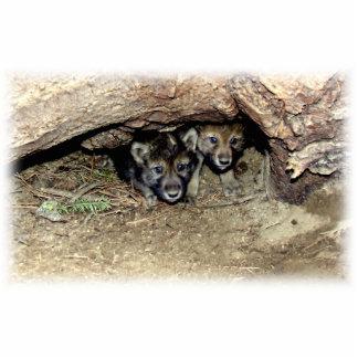 Gemelo salvaje Cubs del lobo de madera en guarida Fotoescultura Vertical