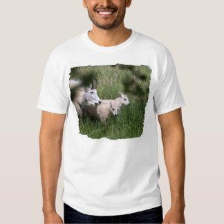 Gemelos de la cabra de montaña camisas