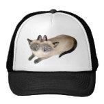 Gemelos del gato siamés gorras de camionero