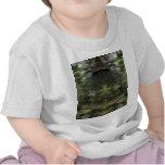 gemineyedesigns68.jpg shirt