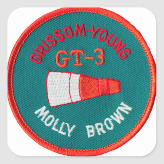 Géminis del proyecto:  GT 3: Grissom/jóvenes Pegatina Cuadrada