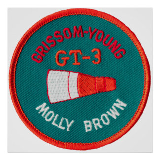 Géminis del proyecto:  GT 3: Grissom/jóvenes Póster