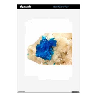 Gemology cristalino azul del colector del perro de calcomanía para el iPad 2