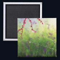 Gems of a Spring Morning Magnet