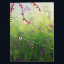 Gems of a Spring Morning Notebook
