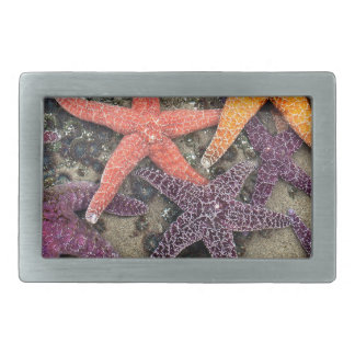 Gems of the sea rectangular belt buckle