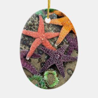 Gems of the sea ceramic ornament