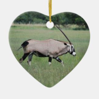 Gemsbok antelope ornaments