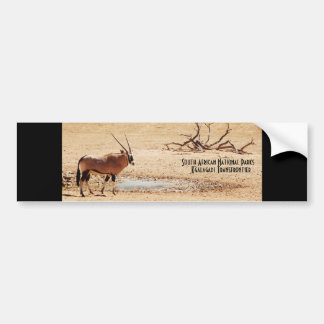 Gemsbok South African National Parks bumpersticker Car Bumper Sticker