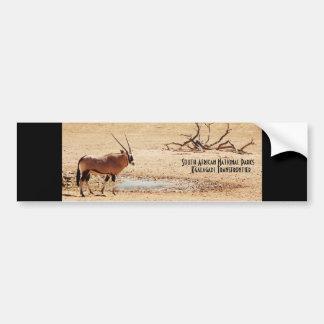 Gemsbok South African National Parks bumpersticker Car Bumper Sticker