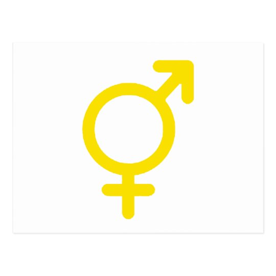 Gender Neutral Yellow The MUSEUM Zazzle Gifts Postcard