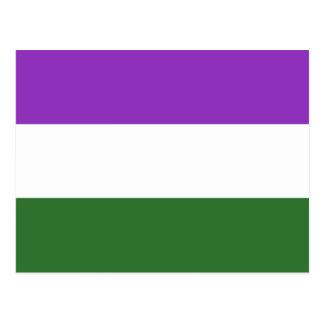 Gender Queer Pride Flag Postcard
