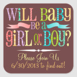 Gender Reveal Baby Shower Party - Custom Stickers