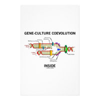 Gene-Culture Coevolution Inside (DNA Replication) Stationery
