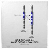 Gene Duplication: Major Factor In Evolution Napkin