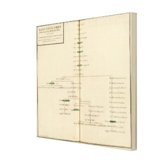 Genealogical Table, France Gallery Wrapped Canvas