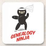Genealogy Ninja Coaster