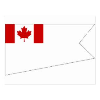 General de brigada bandera del amperio del tarjetas postales