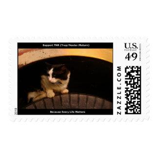 General Feral Cat Stamp