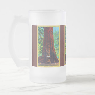 """General Sherman,"" 5000 Years Old, Big Trees Park Frosted Glass Beer Mug"
