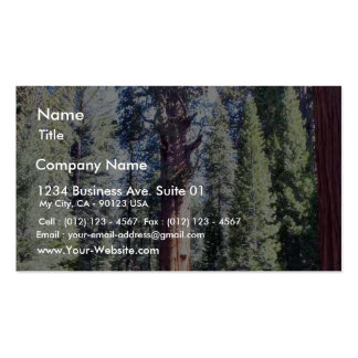General Sherman Trees Forrests Tarjetas De Negocios